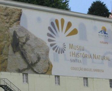 O que visitar: Museu de História Natural de Sintra